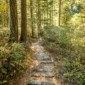 A path leading from the parking lot.- Sooke Potholes