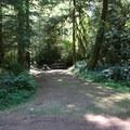 A campsite at Delta Campground.- Delta Campground