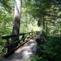 The interpretive trail leads across a bridge.- Delta Campground