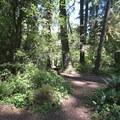 Delta Campground.- Delta Campground