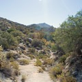 View from the Goat Canyon Trestle Trail.- Goat Canyon Trestle Trail