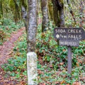 The trailhead is located between the two day use parking areas.- Soda Creek Falls Trail