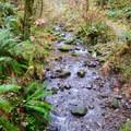 Soda Creek in Cascadia State Park.- Soda Creek Falls Trail