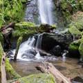 Soda Creek Falls. - Soda Creek Falls Trail