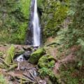 Moss covered rocks and ferns surround Soda Creek Falls.- Soda Creek Falls Trail