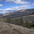 Looking north toward the trailhead. - Yellowstone River Picnic Trail