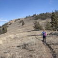 Continuing the hike up this foothill can take you to Specimen Ridge or to Agate Creek.- Yellowstone River Picnic Trail