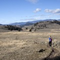 Make this trail a loop by turning north at the fork and traversing the open expanse.- Yellowstone River Picnic Trail