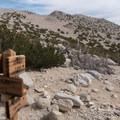 Juntion with the San Bernardino Divide Trail.- San Gorgonio Mountain via Vivian Creek