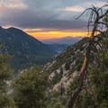 Mount Baldy in the distance as seen from the approach to San Gorgonio.- San Gorgonio Mountain via Vivian Creek