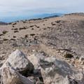 Summit plateau on San Gorgonio.- San Gorgonio Mountain via Vivian Creek