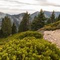 Looking at Galena Peak.- San Gorgonio Mountain via Vivian Creek