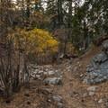 Entering the Vivian Creek area.- San Gorgonio Mountain via Vivian Creek