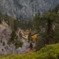 Looking down toward Vivian Creek.- San Gorgonio Mountain via Vivian Creek