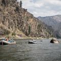 Floating the Main Salmon River.- Main Salmon River: Corn Creek to Carey Creek