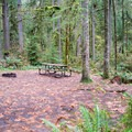 Typical campsite in Cascadia State Park Campground.- Cascadia State Park Campground