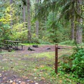 Typical campsite with a picnic table and fire pit.- Cascadia State Park Campground