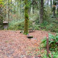 Cascadia State Park Campground.- Cascadia State Park Campground