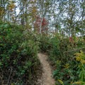 Hiking trail.- Morgan Falls Overlook Park