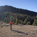 Another open clearing along the trail.- Lower Mount Ellis
