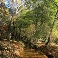 A trail can be followed from the recreational area along Oak Creek.- Crescent Moon Ranch