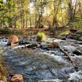 Oak Creek flows through the recreational area.- Crescent Moon Ranch