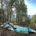 The Enzler crash site.- Wright Peak Summit Trail