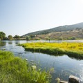 Weber River at Riverside/Old Church Campground.- Riverside/Old Church Campground
