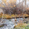 Cowiche Creek at the footsteps of the trailhead.- Cowiche Mountain Trail