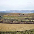Orchards in the valley below.- Cowiche Mountain Trail