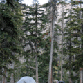 Lovely well-formed camping sites at Quiniscoe Lake at the end of the trail.- Lakeview Trail