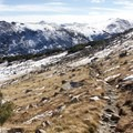 The trail as you reach tree line.- Notch Mountain