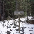 The trail veers right directly after the bridge crossing to stay on the Fall Creek Trail.- Notch Mountain