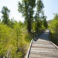 Boardwalk interpretive trail at the Rock Cliff Nature Center.- Rock Cliff Nature Center + Interpretive Trail
