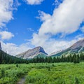 On the way to Assiniboine Pass.- Lake Magog, Marvel Pass + Owl Lake Loop