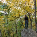 Fall colors in the Smoky Mountains are some of the best anywhere.- Look Rock