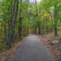 The paved trail that leads to the tower.- Look Rock