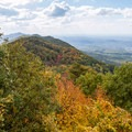 Gazing out across the color-dappled ridgeline from the tower.- Look Rock