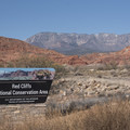 Red Cliffs National Conservation Area.- Red Cliffs Campground