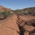 The Anasazi Trail leaves right from Red Cliffs Campground.- Red Cliffs Campground