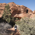 Red Reef Trail and the Red Cliffs Nature Trail leave from the campground.- Red Cliffs Campground