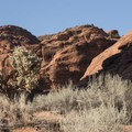 Red Reef Trail.- Red Cliffs Campground