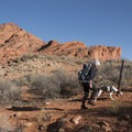 Heading out right from our camp at the Red Cliffs Campground.- Anasazi Trail to Red Reef East Loop