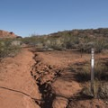 Trail marker.- Anasazi Trail to Red Reef East Loop