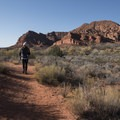Stunning desert landscapes nearby.- Anasazi Trail to Red Reef East Loop