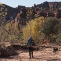 A wash that crosses the trail. There are lots of routes and options back here.- Anasazi Trail to Red Reef East Loop