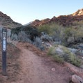 Marked as the Red Reef Trail, the Red Cliff Nature Trail is the first section up to the Moqui Steps.- Red Cliffs Nature Trail