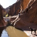 Exploring the Moqui Steps along the Red Cliffs Nature Trail.- Red Cliffs Nature Trail