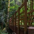 Wooden bridges along the way.- Elk Mountain to Kings Mountain Traverse