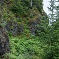 The route from the Elk Mountain summit toward King Mountain can be slippery.- Elk Mountain to Kings Mountain Traverse